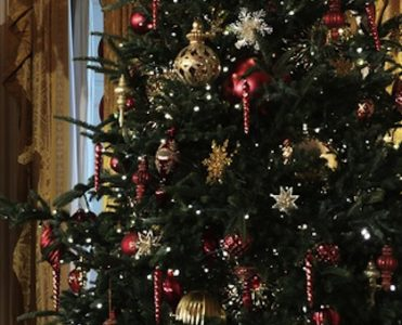 Check out the Obamas' Last White House Holiday Decorations ➤ To see more news about The Most Expensive Homes around the world visit us at www.themostexpensivehomes.com #mostexpensive #mostexpensivehomes #themostexpensivehomes @expensivehomes