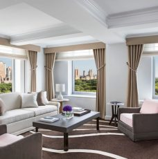 New York City Guide: The Best Hotels new york city guide New York City Guide: The Best Hotels New York City Guide The Best Resturants 2 228x230